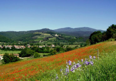 Toscana - Umbria Primavera - Estate